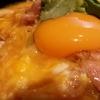 【名古屋駅すぐ!】パリパリセクシーな手羽先と共に!『とり五鐡』でキラキラ親子丼を食べてきた。