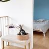 【猫アレルギー対策】DIYで寝室まわりにキャットステップ&ニャンモックをつくりました!
