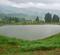 山古志虫亀の棚池(新潟県長岡)