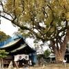 【広島、尾道】【御朱印】『艮神社』に行ってきました。国内旅行 観光 女子旅 一人旅 主婦ブログ