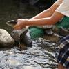 東京でも川あそび満喫!ニジマス釣りにつかみ取り。