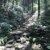 【熊野古道】馬越峠を歩いてきました