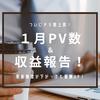 【はてなブログ】1月PV・収益まとめ~2万PV届かずも月収7000円を達成!~