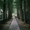 梅雨時の荻窪大田黒公園