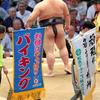 【日馬富士引退】連日の相撲報道、結局全て売上・利益・PVのため。そして当ブログも。
