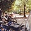 Photo No.399 / 公園の午後