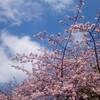 上野散歩~旧岩崎邸とおやつと純喫茶を巡った話~