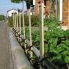 竹垣の完成が楽しみです