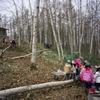 「森のお遊び会」5月