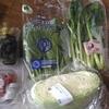 パルシステムの野菜が届いた!