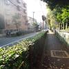 JR田端駅北口近くのマクドナルドで、おてごろマックの昼飯!!!