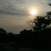 牛を横目にサイクリング! - 夕日の旅・後編 - @DAY1【Vol.4】
