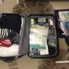機内持ち込み手荷物のみで1ヶ月海外旅行するとこんな感じ【中身は恥だが役に立つ】