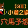 【GⅢ】小倉2歳S 結果 回顧