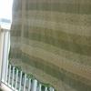 朝から ベッドカバーの洗濯・・・┐(´д`)┌