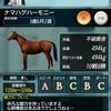 ダビマス タッグNo1選手権安田記念への生産結果&第37回公式BC&スターリーグseason3に向けて!
