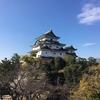 夫が一人旅した和歌山のお土産9品
