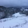 la neige 。