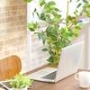 ブログを続けやすくするブログ環境づくり