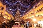 15メートルの特大クリスマスツリー! サッポロファクトリーでクリスマス気分に浸る。