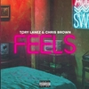 【歌詞和訳】F.E.E.L.S. - トリー・レーンズ ft.クリス・ブラウン:Tory Lanez ft.Chris Brown