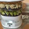 ティファールの蒸し器が製造中止になってた!これで楽々糖質減料理をしてたのに、なぜ!(ティファールスチームクッカー)