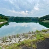 桜ため池(鳥取県倉吉)