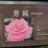 芳純(ほうじゅん) 京成バラ園 2016/05/16