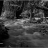 上高地 ― 梓川流れる岸辺 06(雪解け水流るる)