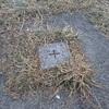[三角点]★宮の森(四等三角点、点名:宮の森町)標石