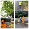 5月④雨のお誕生日会