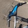 日本人初?ルクセンブルクのレンタル自転車でベルギーとフランスへ。