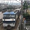京の初夏の散歩「伏見街道を歩く」