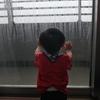 暴風雨でもお散歩にいきたい息子