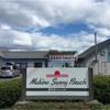 超おすすめ! 琵琶湖でキャンプするなら マキノ サニービーチ 高木浜オートキャンプ場