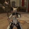 極女神の白杖ゲットしました。(後半ちょっと雑記)