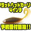 【IMAKATSU】人気ワームのサイズアップモデル「フラットヘッドカーリー4インチ」通販予約受付開始!