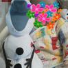ディズニーリゾート旅行・赤ちゃん連れの持ち物&あると便利な知恵袋 編Disney大好き・大家族のありもママVer ~ ARIVERまとめ記事