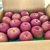 待ってた青森の斎藤農園の印度りんごが