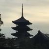 今日の京都東寺の五重塔(お花見) その2