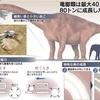 超巨大恐竜、なぜ急成長 秘密は骨に…