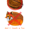 don't touch a Fox