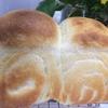 パンを焼いてみました。
