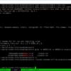 64bit BOOMプロセッサでCoremarkを動作させたい (2. RTLによるシミュレーション)