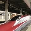新幹線「はやぶさ」の乗車記!岩手県・盛岡日帰り旅行のおすすめスポットを紹介します!