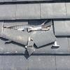 西蒲区川崎にて屋根瓦の割れをチェックに!瓦工事も新潟外装なら安心です。