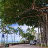 ハワイの風景 Part 4