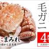 タラバガニ選定の3つのポイント堅蟹を選ぶ。