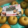 今年も梨が届きました〜瑞々しくて甘ぁーい秋の味覚〜