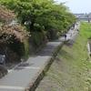 宮川町・第69回京おどり